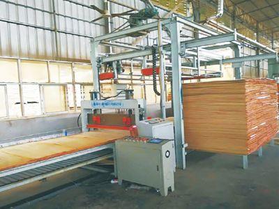 网带式排板铺装线
